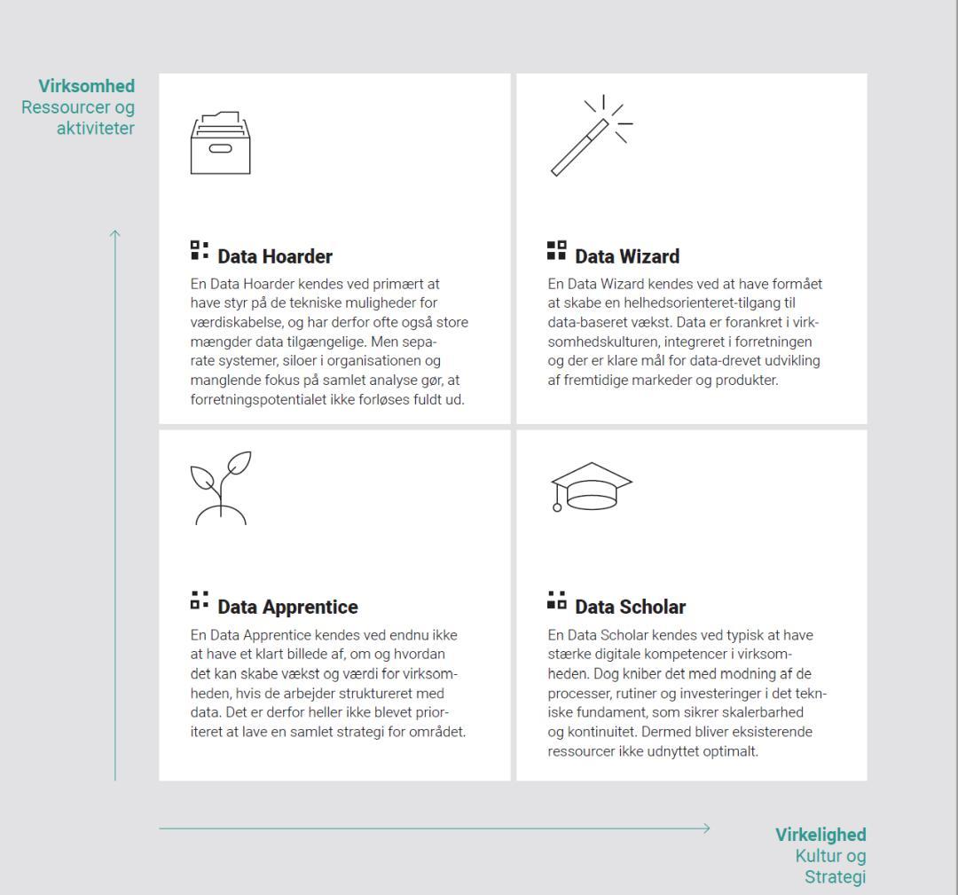 DataForBusiness Modenhedsmatrix